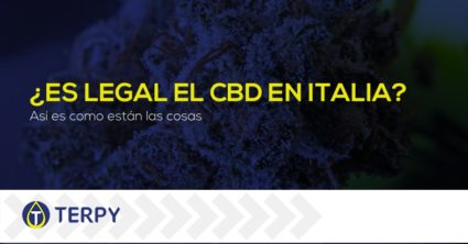 ¿Es legal el CBD en Italia?