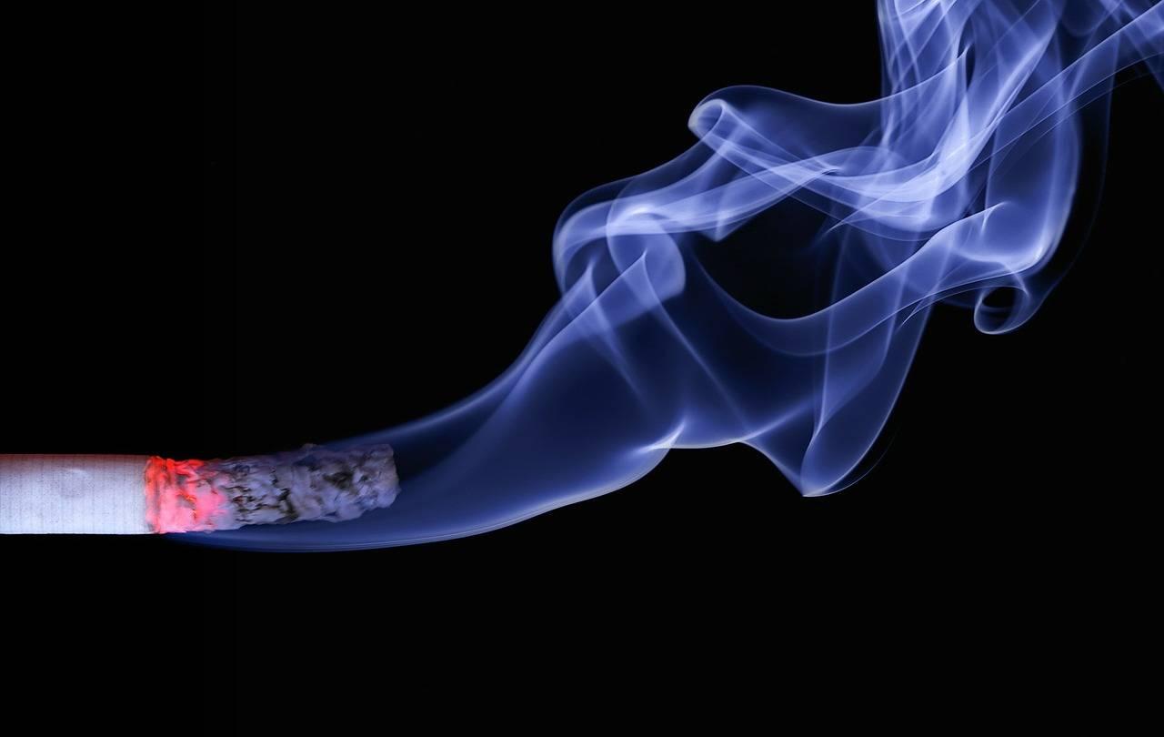 El humo del cigarrillo es muy tóxico